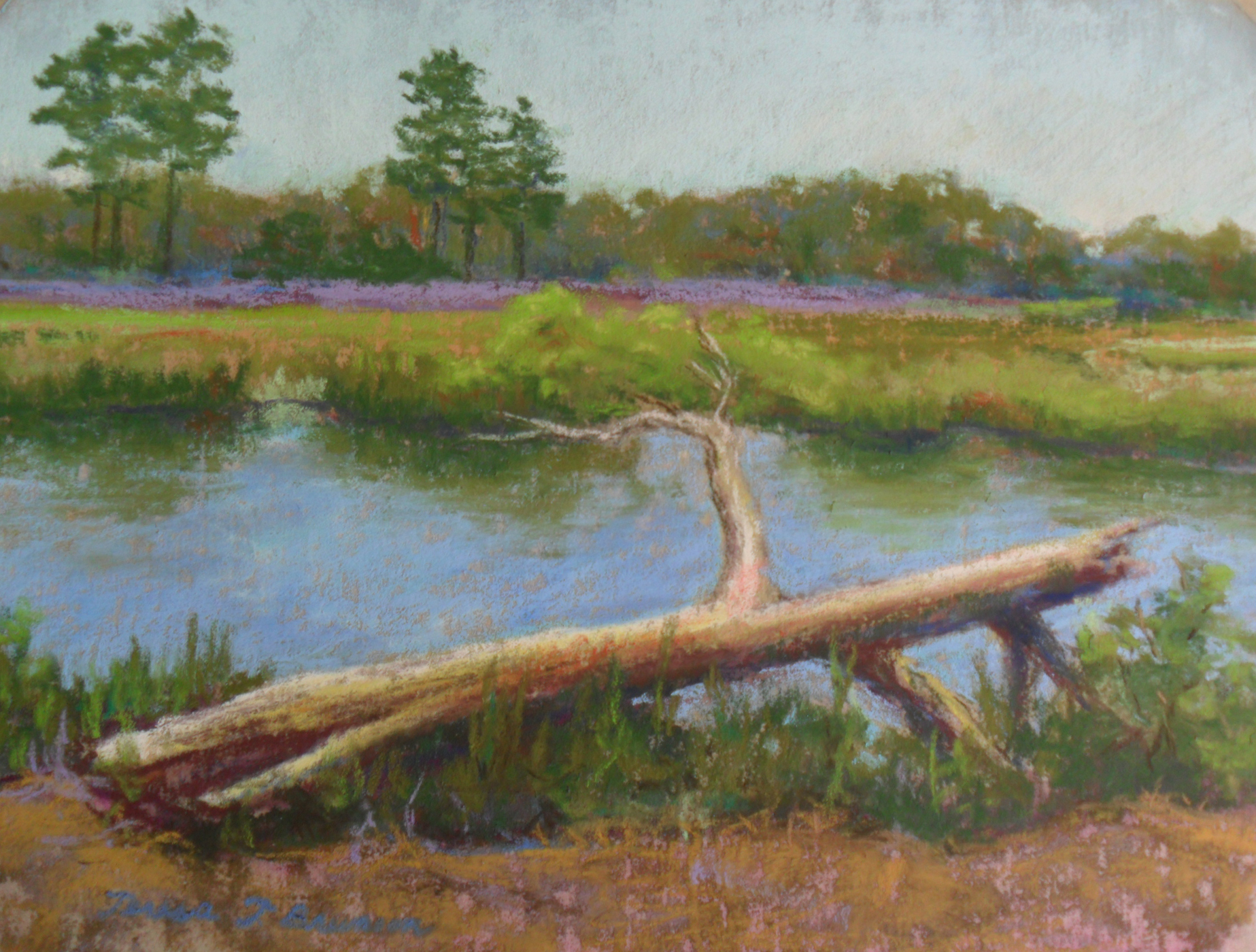 Plein Air Pastel Painting of Salt Pond