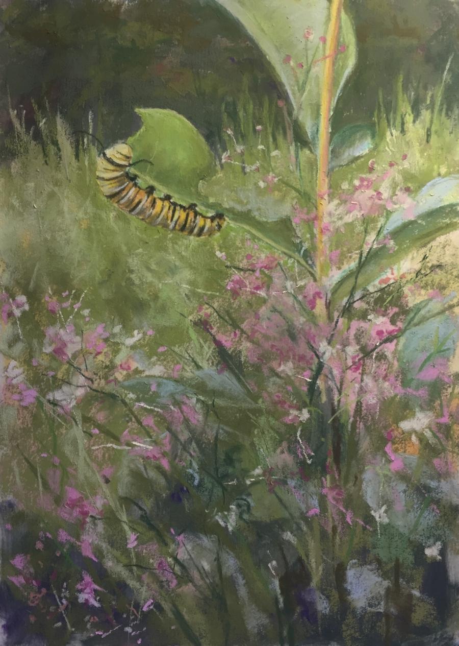 "Caterpillar Munching, 11""x14"" pastel painting"