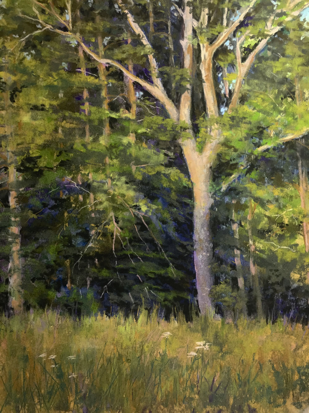 Pastel Painting by Teresa T. Brunson