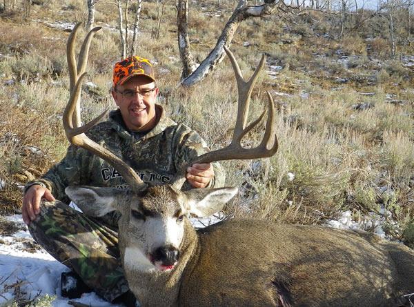 mule-deer-3.jpg
