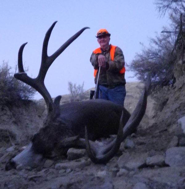 mule-deer2.jpg