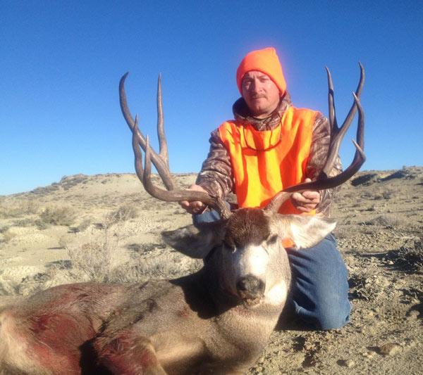 mule-deer334.jpg