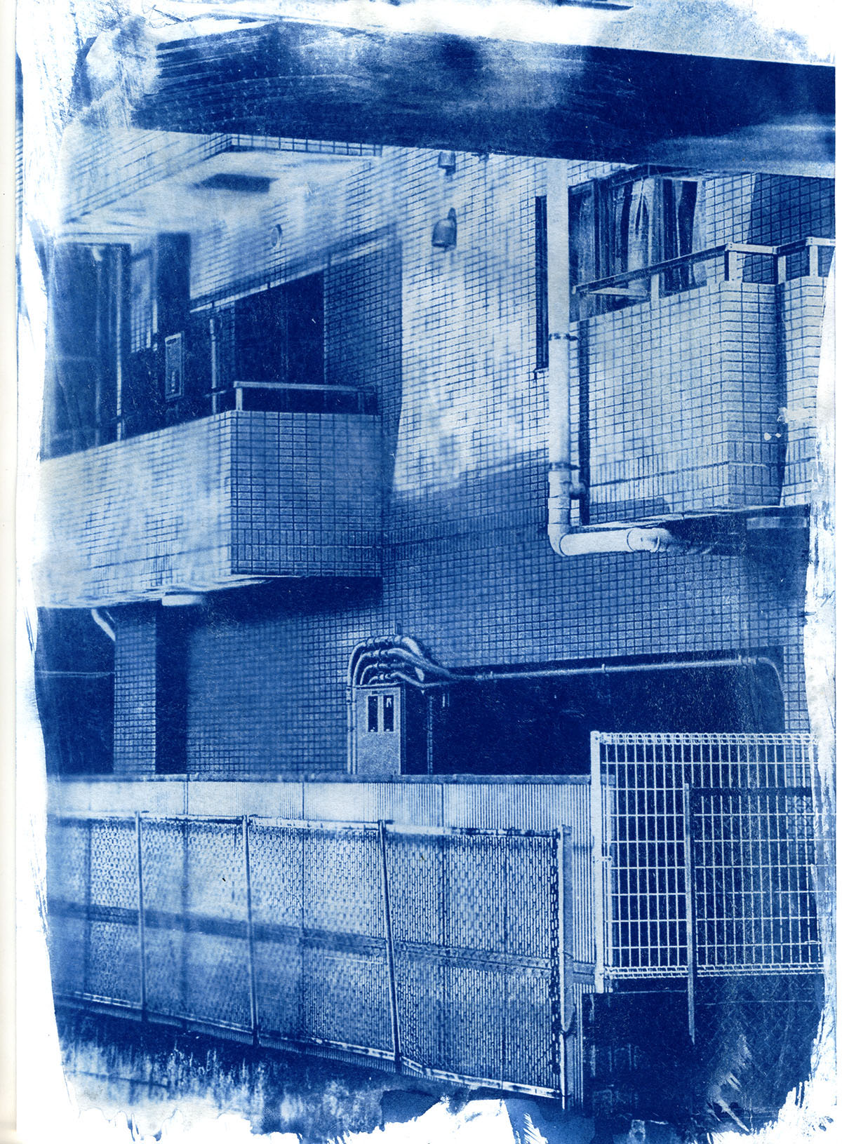 ARRcyanotype72res.jpg