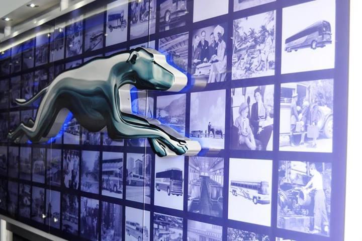 greyhound3.jpg