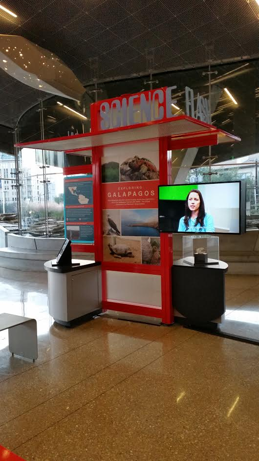 Concept #1: Science Flash portable exhibit for the lobby of Perot.