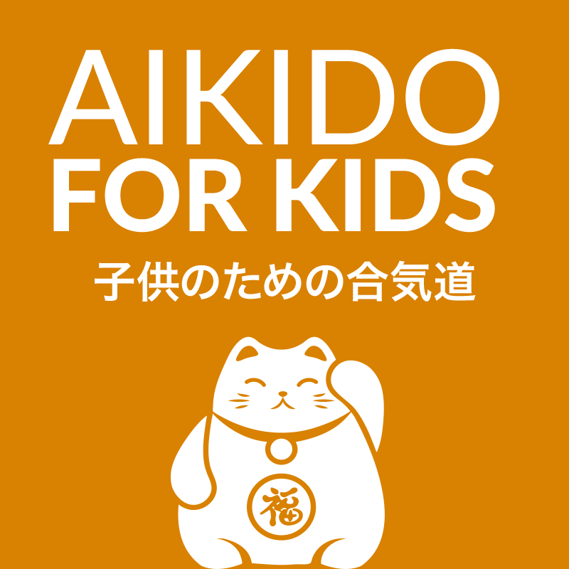 Aikido for Kids, White Plains, NY, Westchester