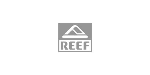 13_reef.jpg