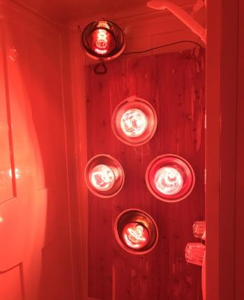 Near Infrared Light Emitting Diode (LED) Spa