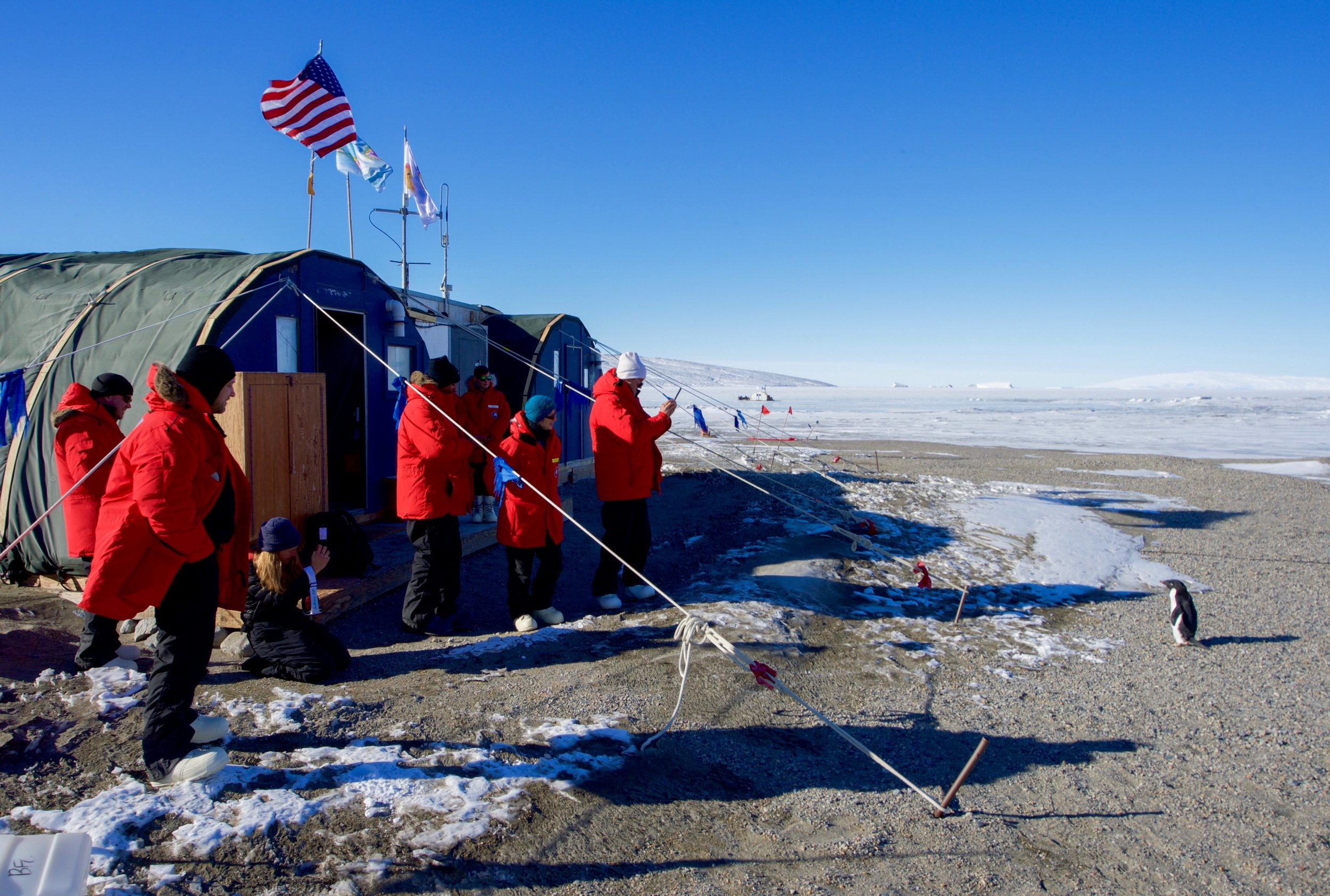 Secretary Kerry and his entourage wait for a penguin to approach them during their tour of Antarctica.