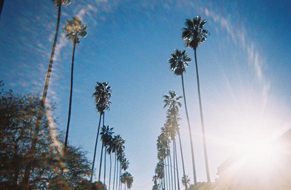 Los Angeles, CA (2019)