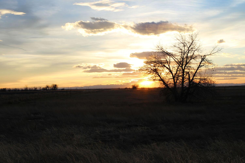 Sunset Extra.jpg