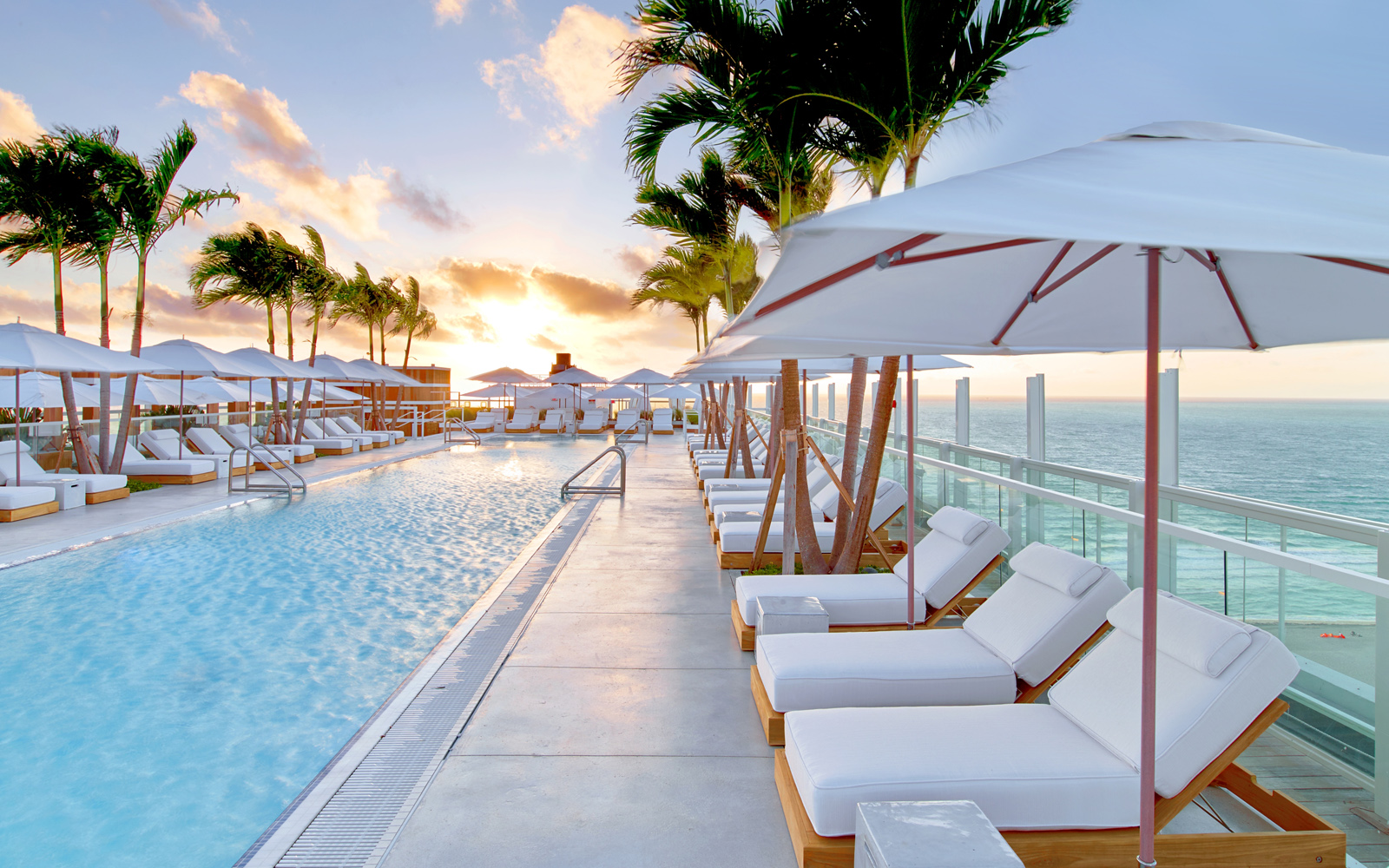 1 Hotel South Beach Rooftop/ see more  here