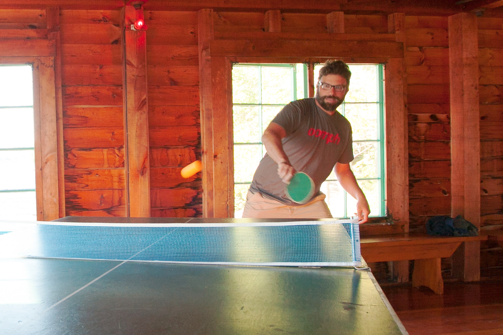 PingPong-crop+lighten.jpg