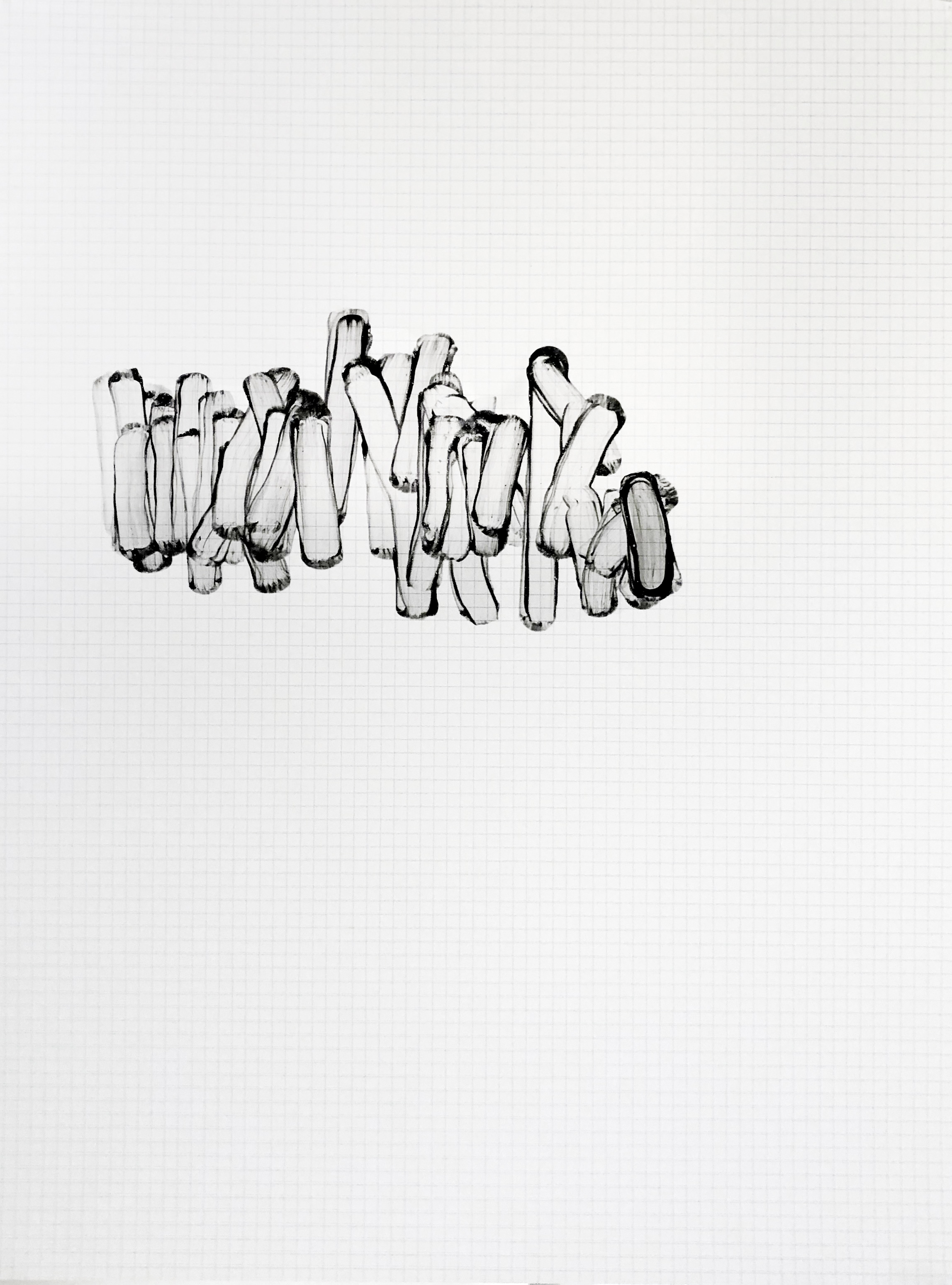 Sharon Louden,  Flaps , 1998, Graphite and gel medium on gridded mylar, 24 x 18 inches unframed (61 x 45.7 cm)