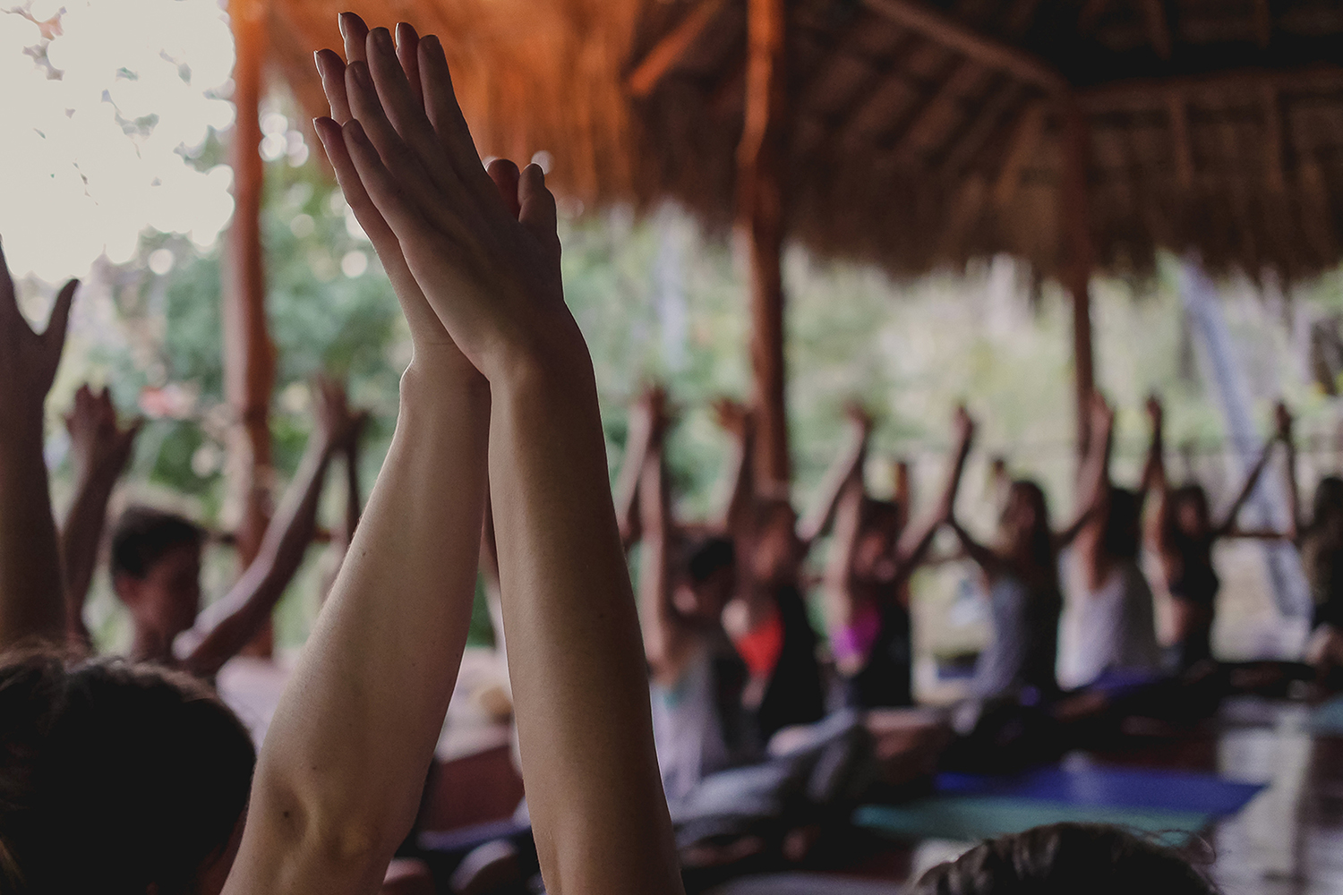 Yoga Teacher Trainings Bali & Sri Lanka