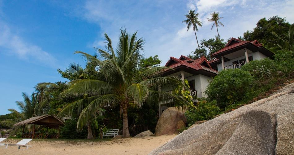 200-hour-vinyasa-hatha-yoga-teacher-training-thailand.jpg