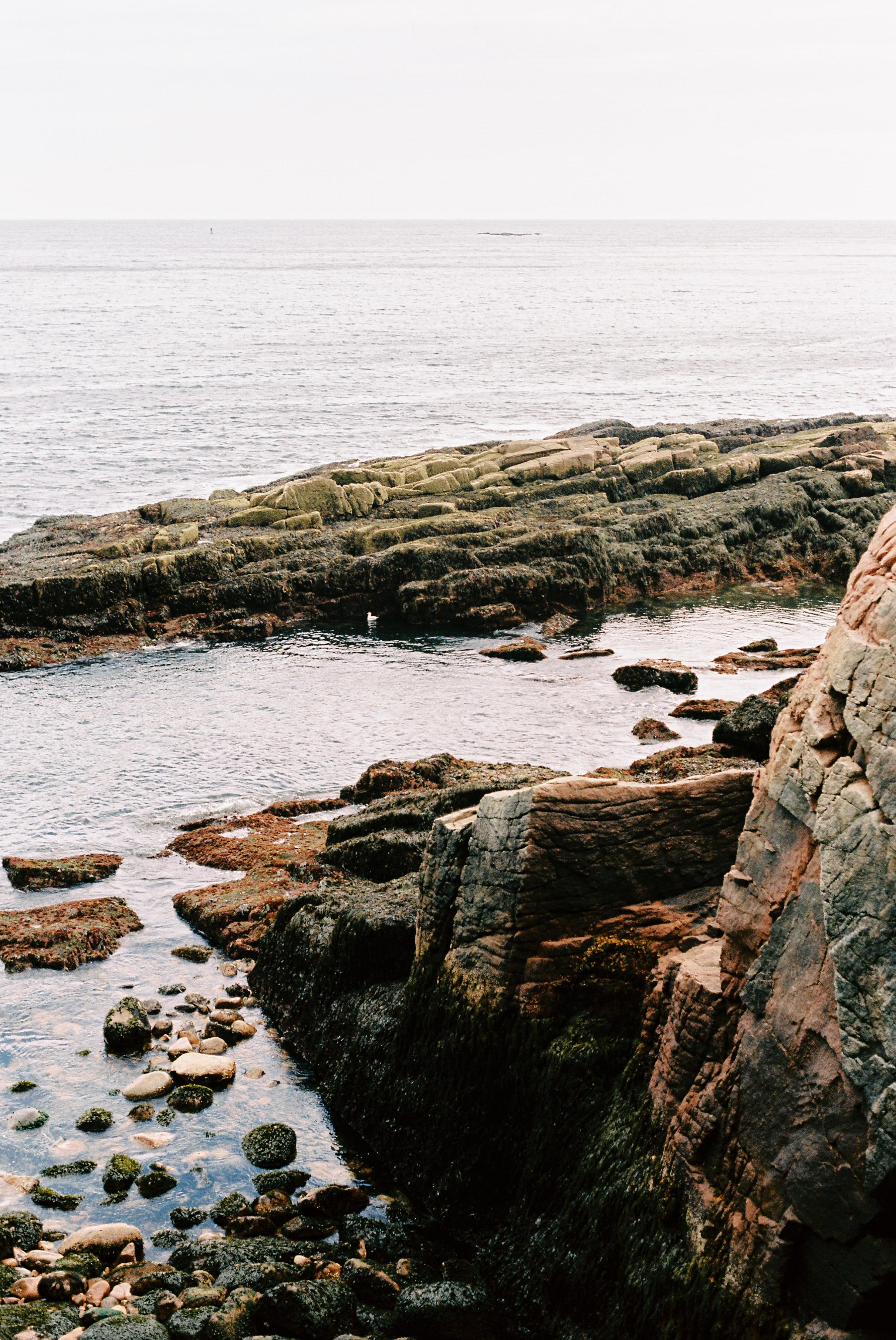 The Coast. [Nikon F3 / 50 / Kodak Ektar]