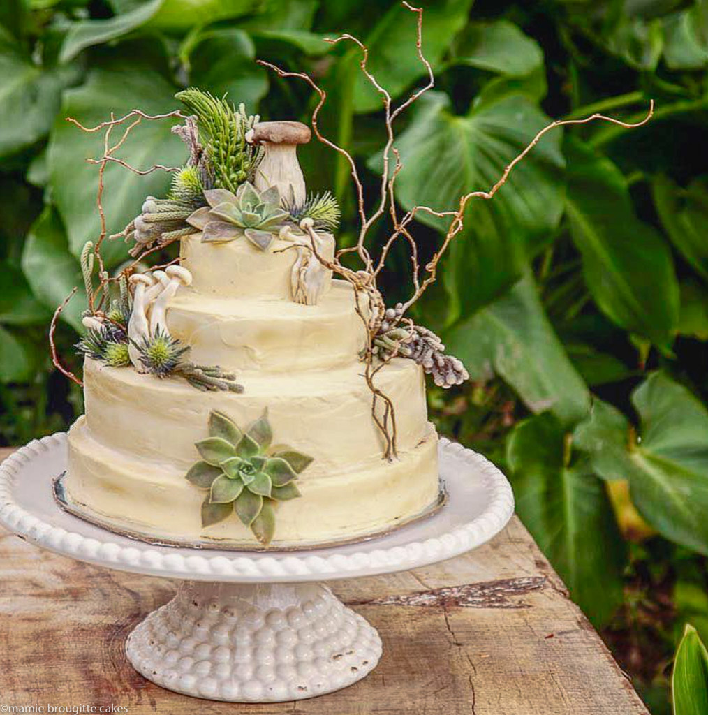 14-mushroom-cake.jpg