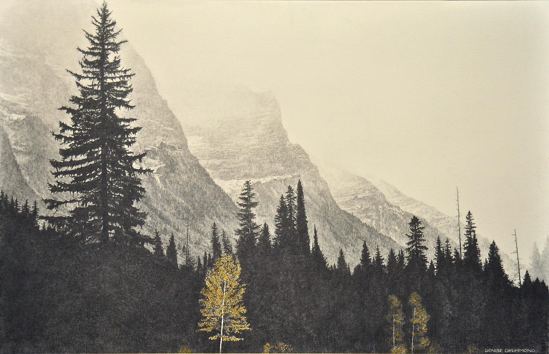 Glacier Mist/Glacier NP