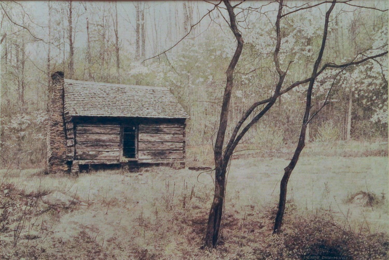 Dogwood Days of Spring/Smoky Mountains NP