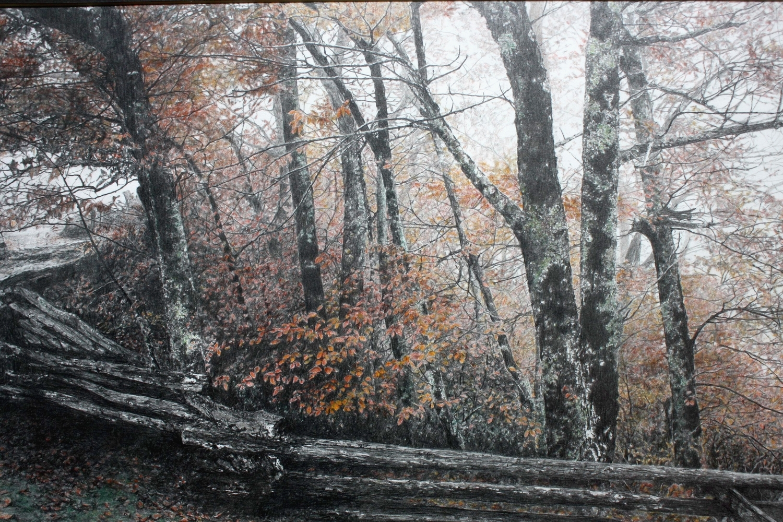 Parkway Mist/Blue Ridge Pkwy