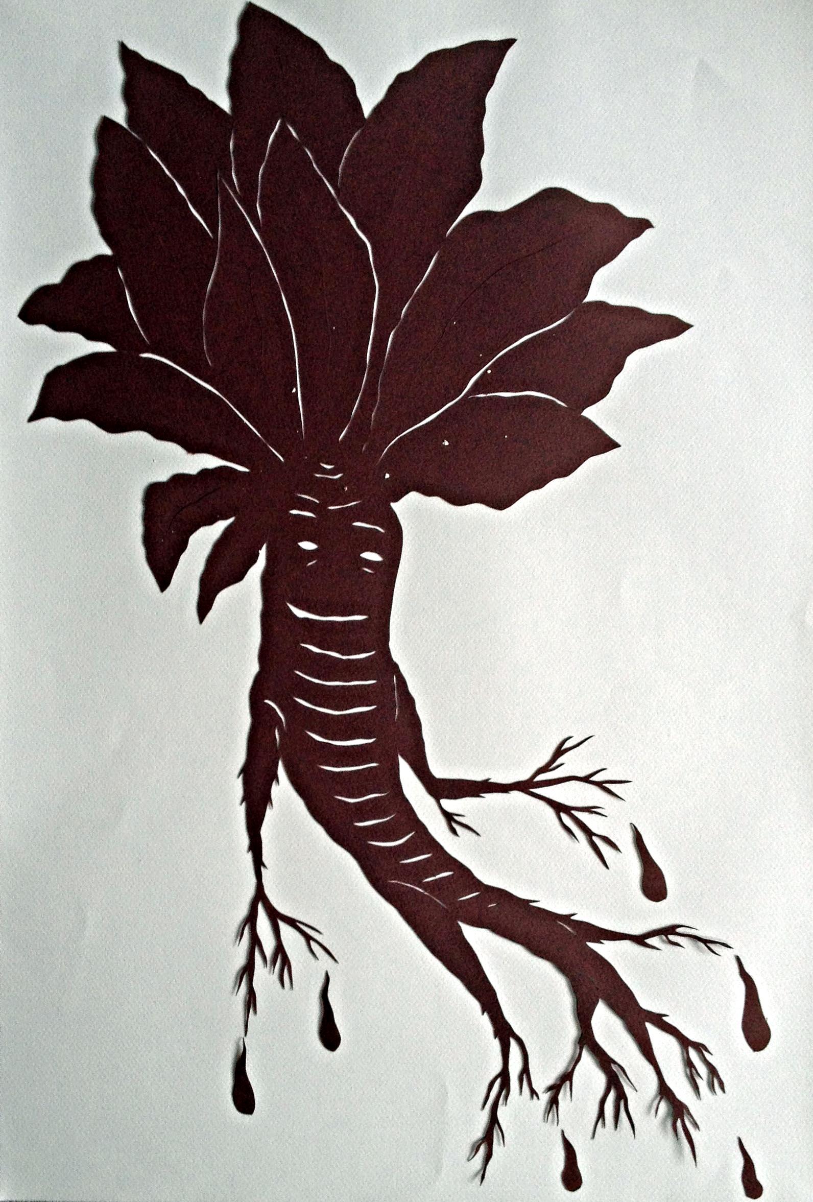 Mandragora (Love Plant)