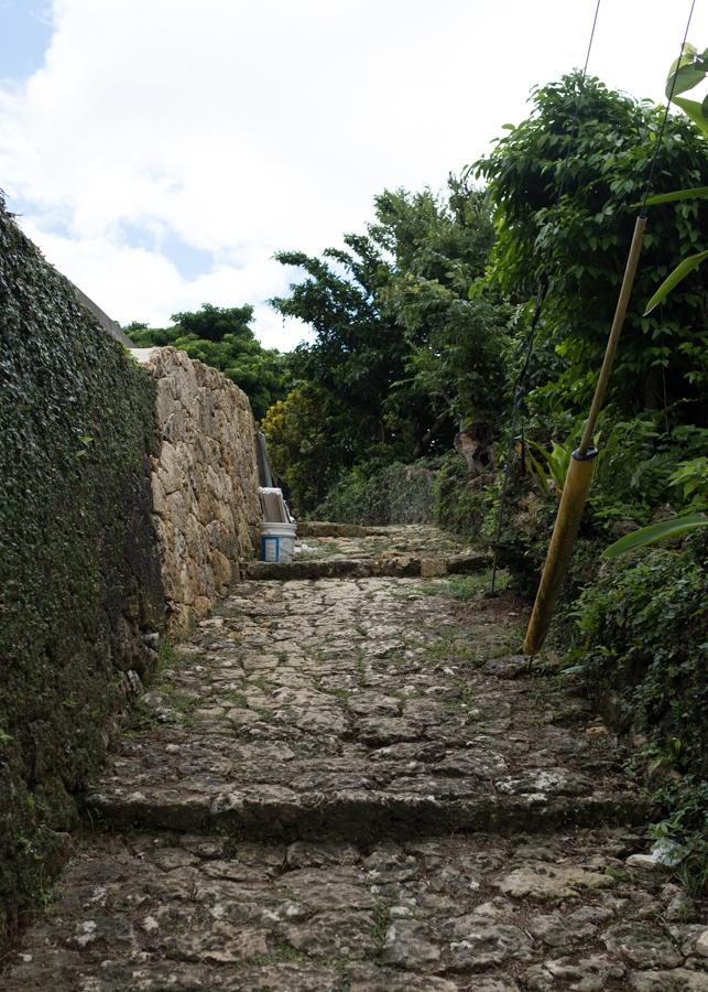 500-year old limestone path