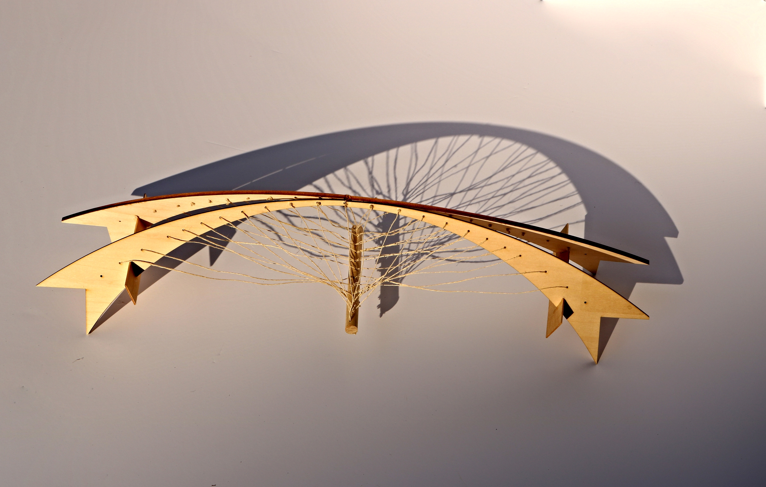 Basswood Tensile Bridge. Supported over 198 times its own weight.