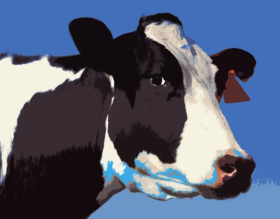 peggy cow.jpg