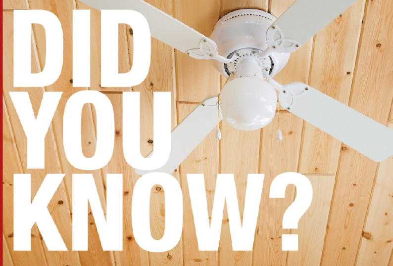 did-you-know-ceiling-fans-cut-energy-bills-by-up-to-30-percent.jpg
