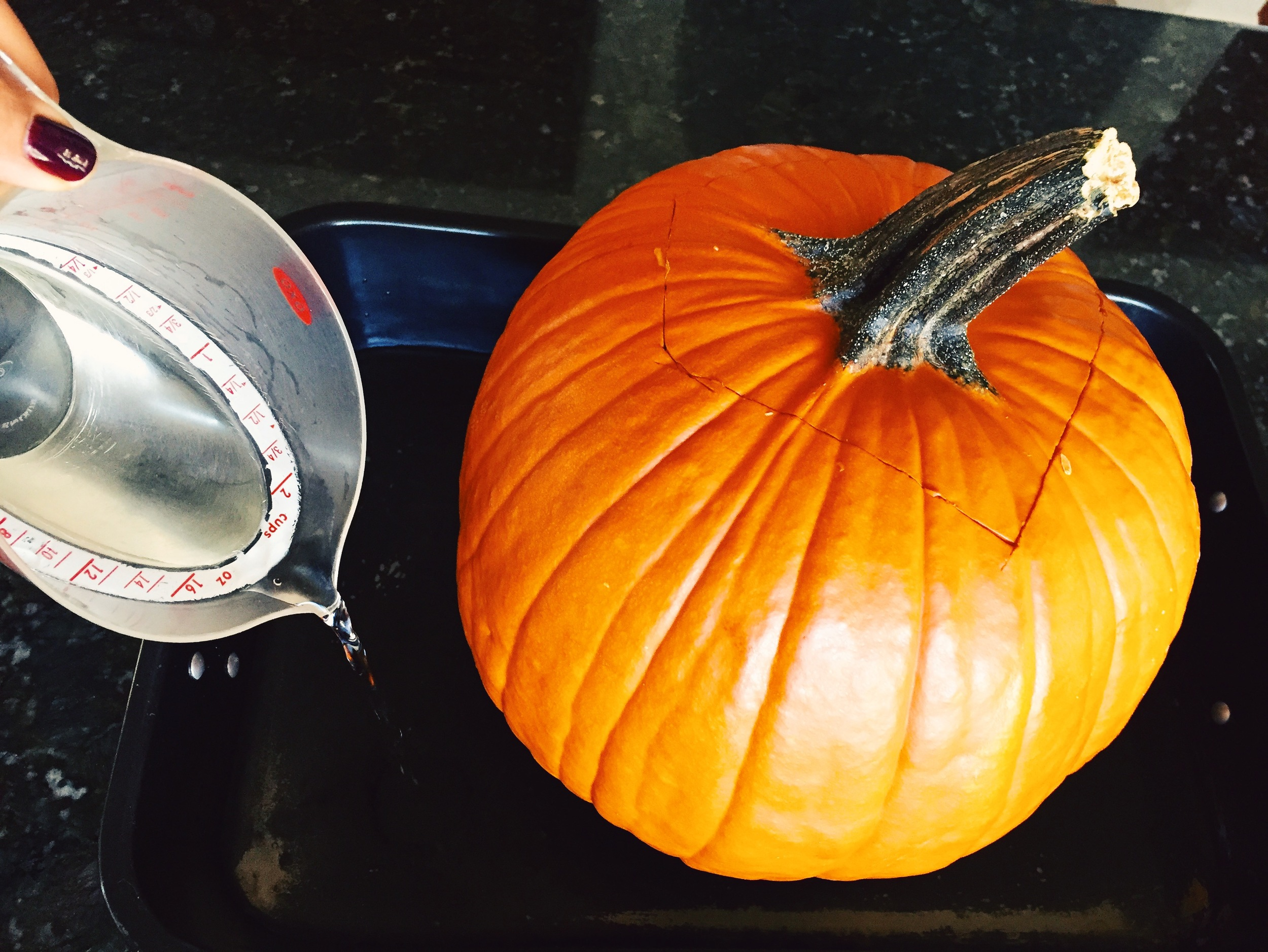 Put top back on the pumpkin. Place it in the roasting pan. Cover bottom of pan with 1/2 inch of water (you can also put some beer in the water for flavor).
