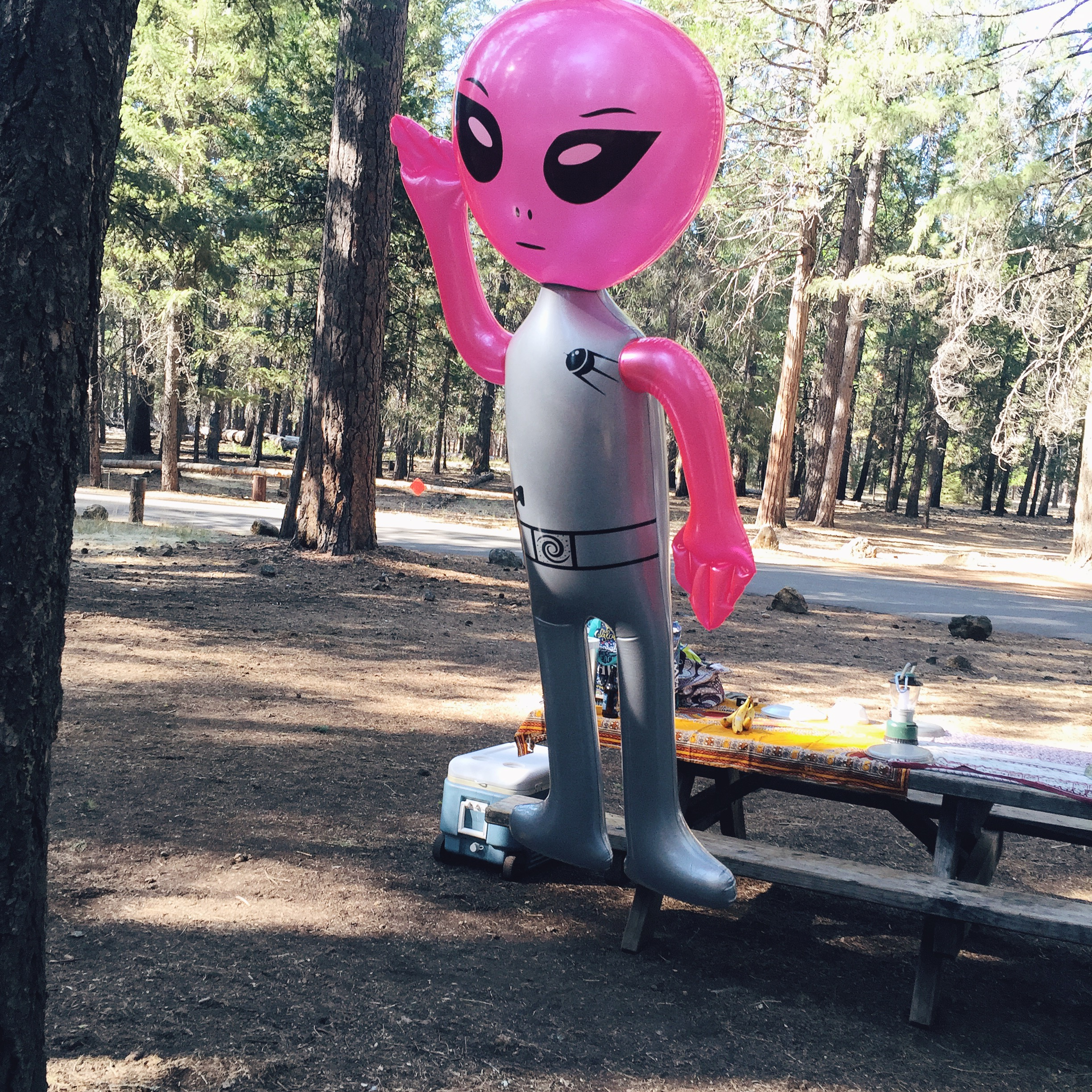 "Campsite is not complete without our Alien ""Pinky""."