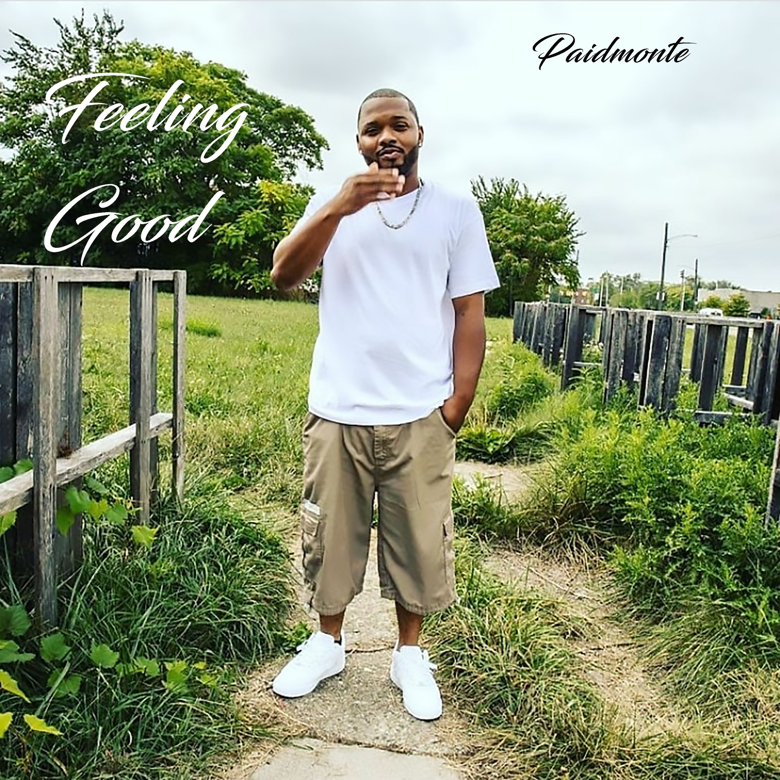Paidmonte - Feeling Good - Single.jpg