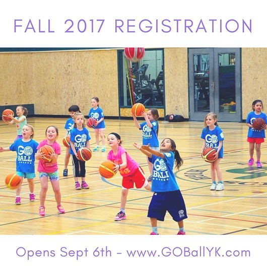 Fall 2017 session is coming!  Online registration will open on Sept 6th. In the meantime, check out our website for info and updated division categories this year. www.GOBallYK.com