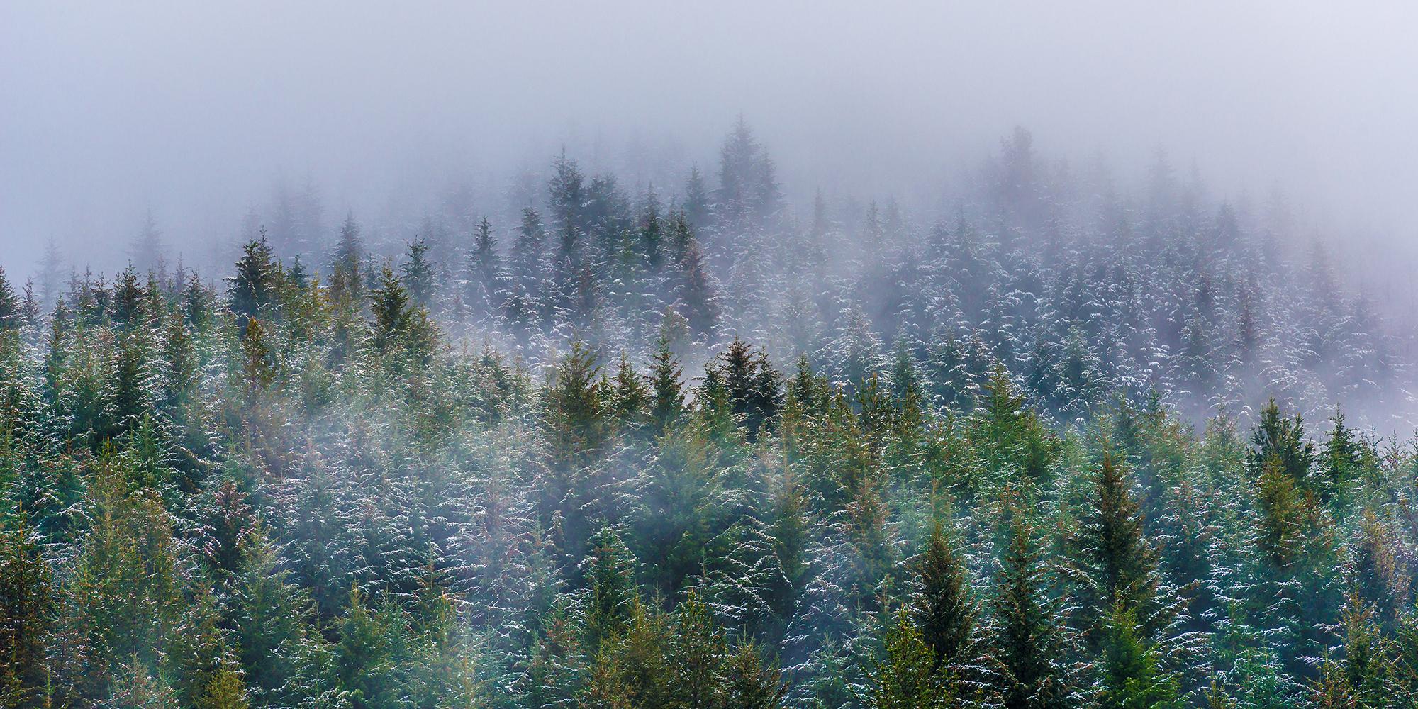 Between clouds.jpg