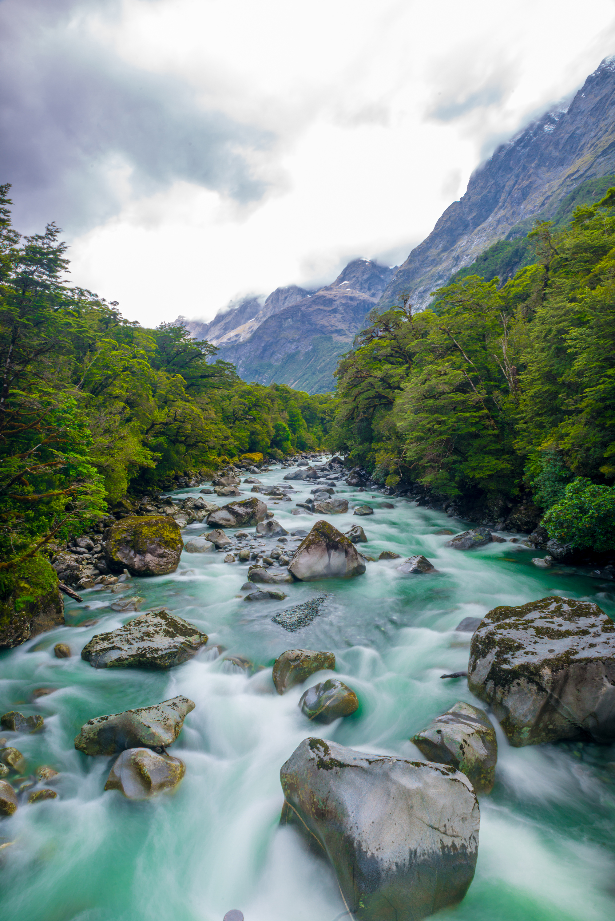 Rivers on the way to Milford Sound.jpg