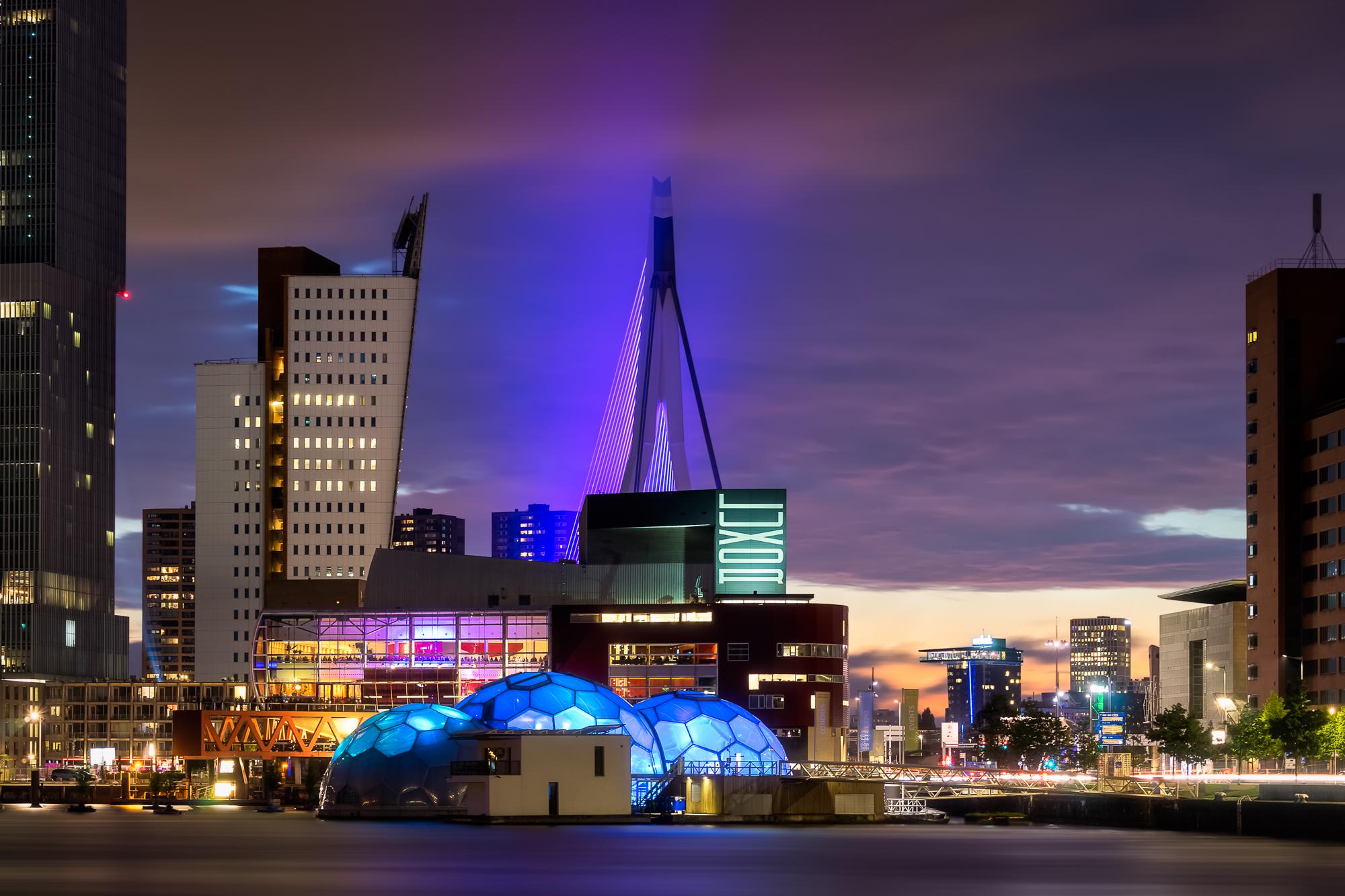 Rotterdam Nights no.jpg