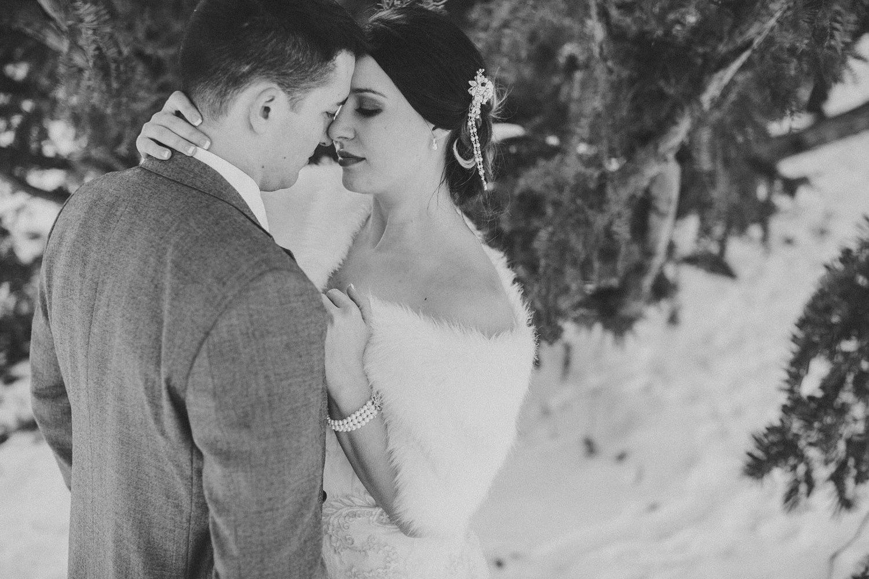 Michigan Wedding Photographer - Grand Rapids Winter Wedding - 072.jpg