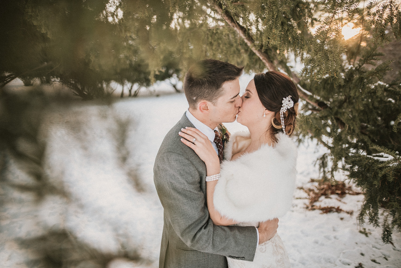 Michigan Wedding Photographer - Grand Rapids Winter Wedding - 074.jpg