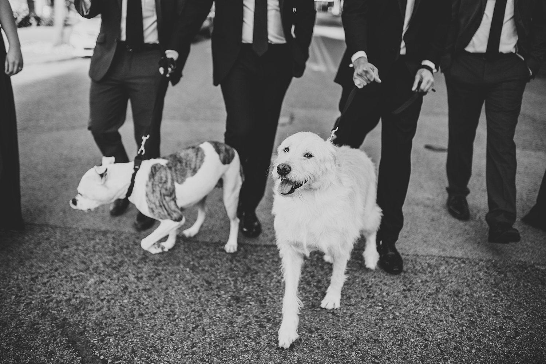 Justin and Patrick - Downtown Dallas Wedding Photographers 77.jpg