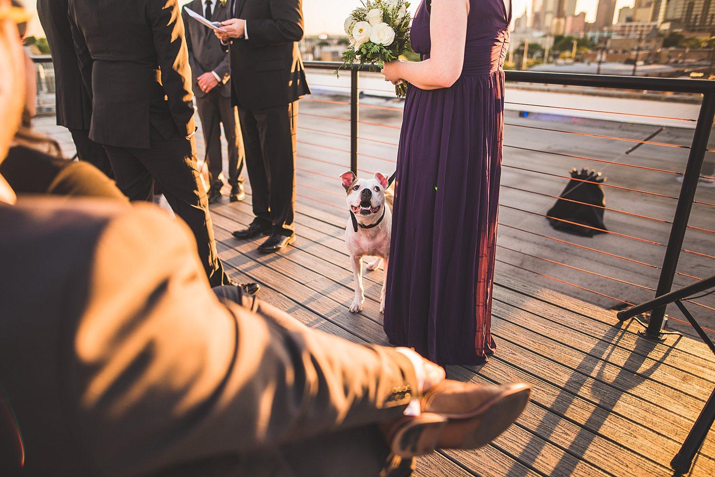 Justin and Patrick - Downtown Dallas Wedding Photographers 89.jpg