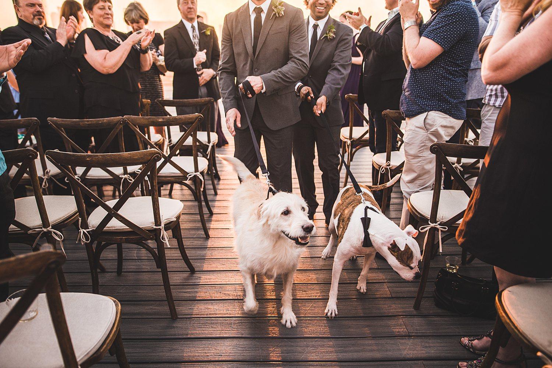 Justin and Patrick - Downtown Dallas Wedding Photographers 101.jpg