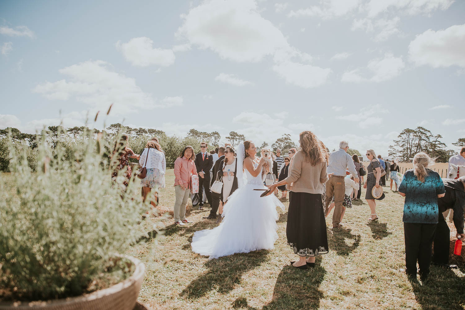 james-melinda-auckland-rustic-farm-wedding-52