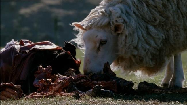 black-sheep-horror-sheep-10.jpg