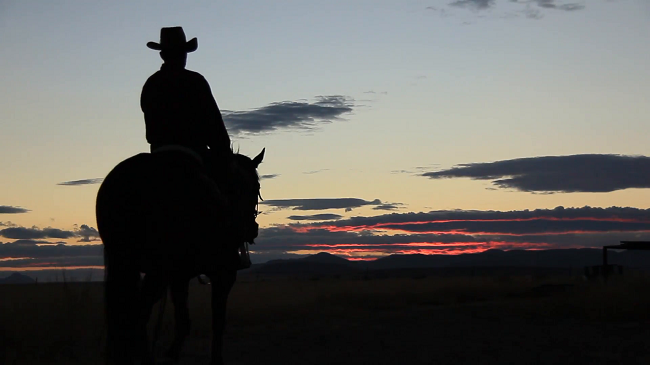 cowboy-rides-off-into-the-sunset.png