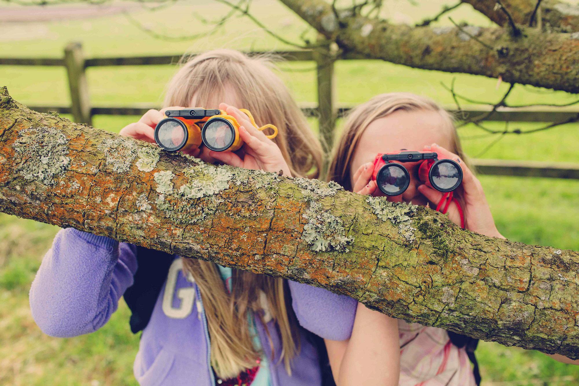 Garden birdwatchers 3.jpg