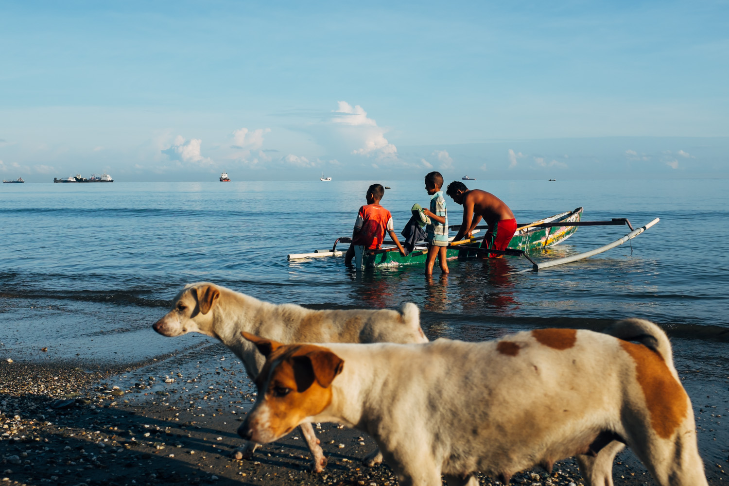 Dogs and fishermen sharing the early Sun on a beach outside Dili
