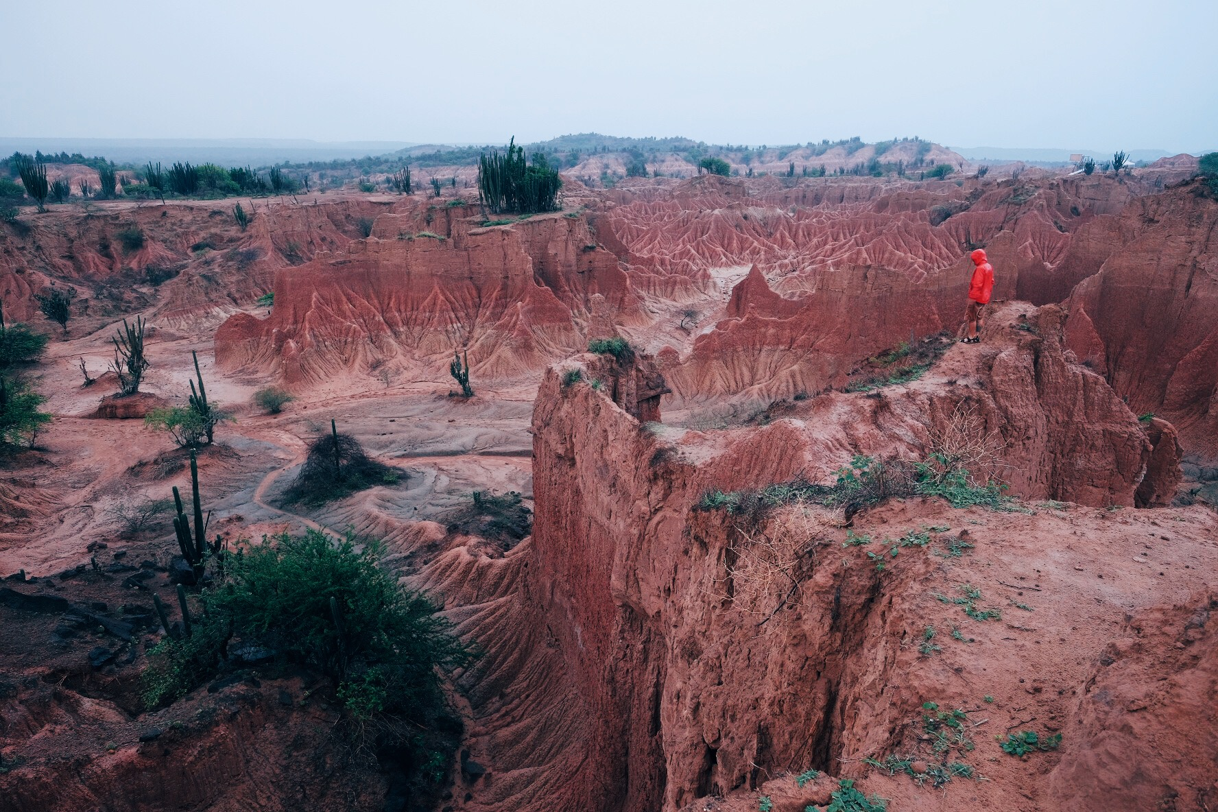 Admiring the incredible beauty of the  Tatacoa desert .