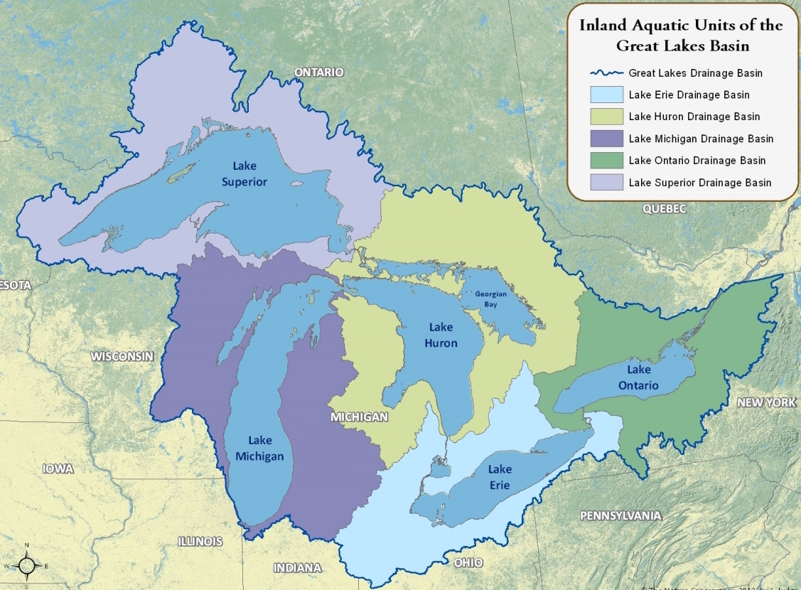 Great Lakes Ecosystem.jpg