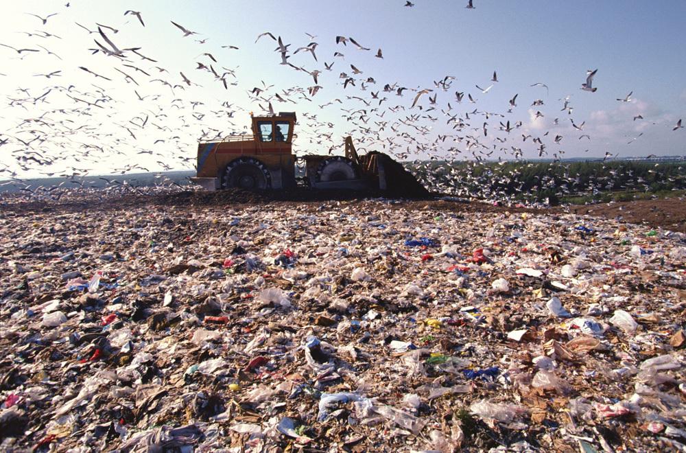 solid waste management.jpg